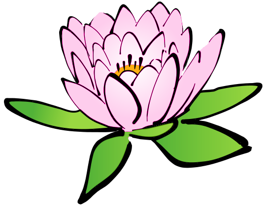 lotus_flower_pink